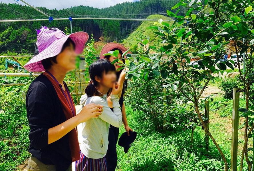 農薬を使っていないので、虫対策に長袖がおすすめ。日中は暑いので帽子も忘れずに。