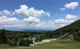 野生のシカに会えるかも?!ナイトサファリや夏の星空観賞を楽しめる茶臼山高原へドライブ 愛知県豊根村