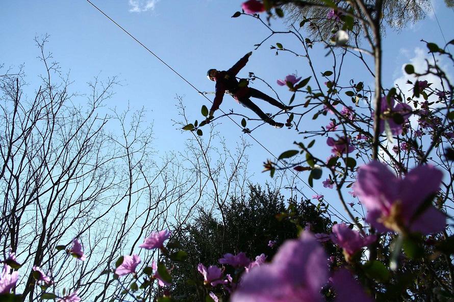林の中に張られたワイヤーを使って空中を移動するエア・トリップ。鳥になった気分を味わえる。