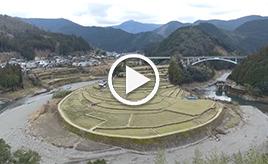【Gazoo mura ドライブ】~道~ 和歌山県有田川町 国道480号をとことん走り、絶景スポットを楽しむ