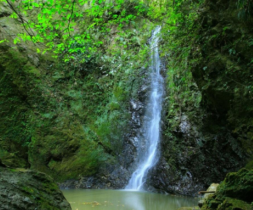 緑の木々に囲まれた黒滝は、花嫁街道ハイキングコースの立ち寄りポイント。