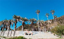 ここは海外?!海一望の関東最南端リゾート、白浜フラワーパークへドライブ 千葉県南房総市