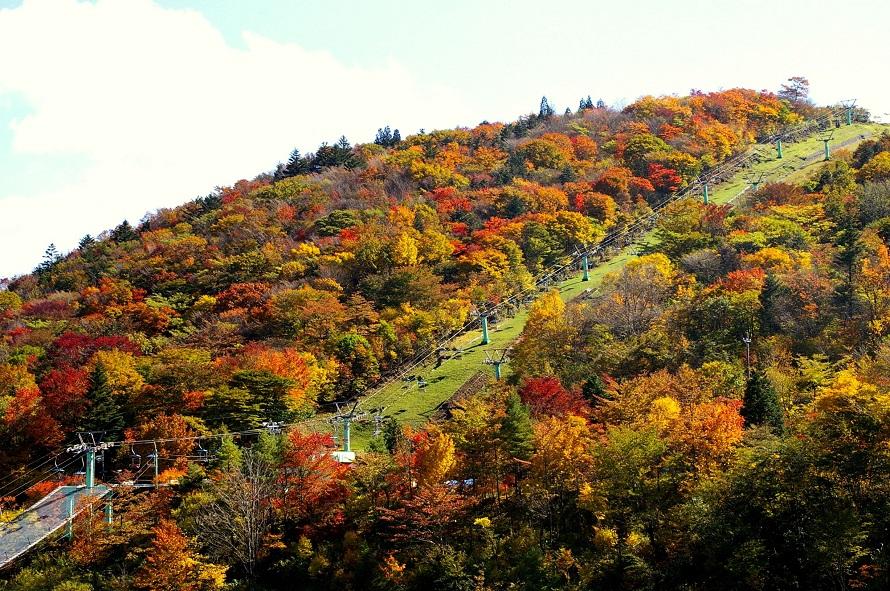 山頂までリフトが運行。所要約10分。