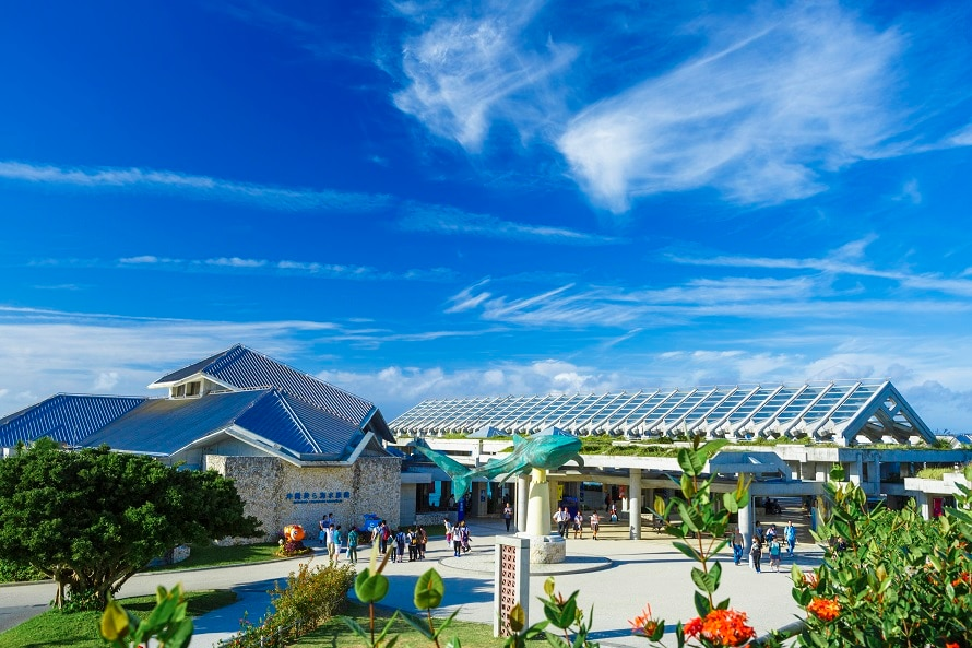 写真提供 国営沖縄記念公園(海洋博公園):沖縄美ら海水族館