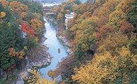 紅葉、温泉、リンゴ狩り!秋色の天龍峡へドライブ 長野県飯田市