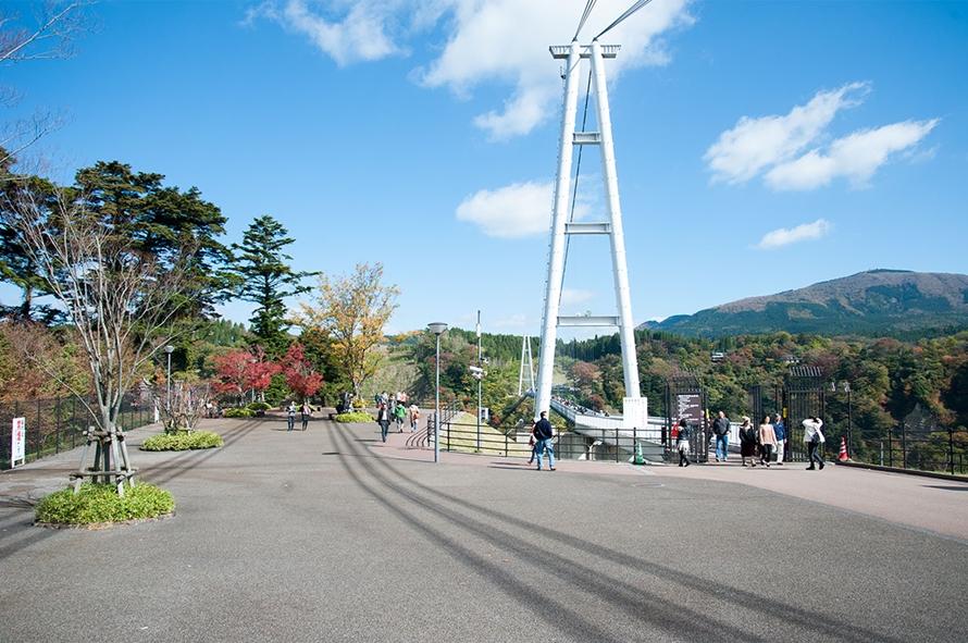 中村エリア側からの橋の眺め。橋の袂から見ると、ワイヤーで橋が吊られている様子がよくわかる。おすすめのフォトポイントだ。