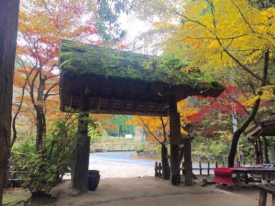 入口を入ると、そこは千代川の支流・北股川の川音が響き、風がそよぐ別世界。