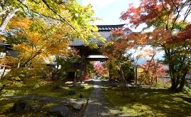 苔むした古刹を訪れ、冬の人気スイーツを楽しもう!「雪国の小京都」へドライブ 長野県飯山市