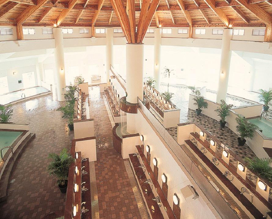 ドーム状の高い屋根が特徴的。マイナスイオン浴、打たせ湯など12種類のお風呂を楽しめる。