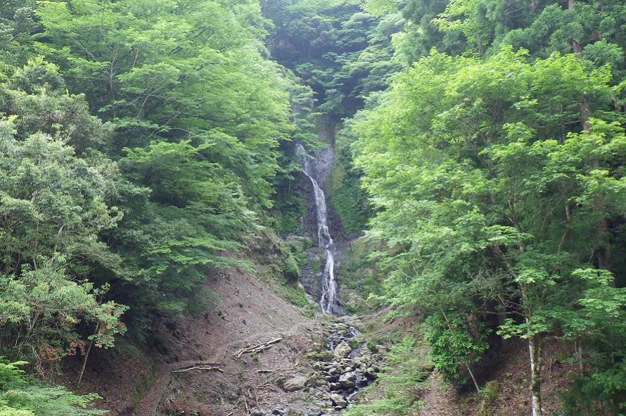 湯川川上流の湯川渓谷は清流に育つ川魚、アマゴの生息地でアマゴ釣りの名所。豪快なさがり滝は渓谷の谷間にある。