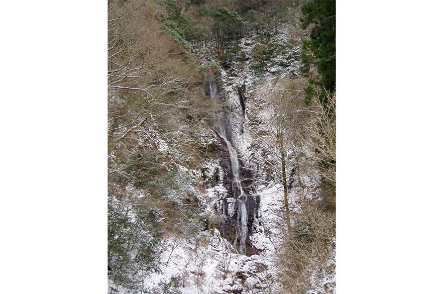 新緑、紅葉、雪景色と四季折々の景観が美しい。