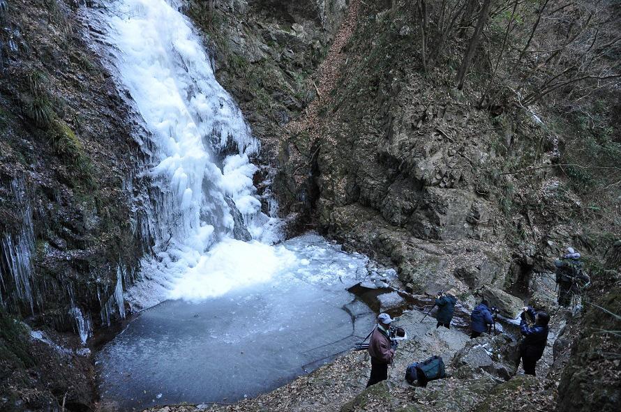 氷結した払沢の滝。2020年3月15日まで「払沢の滝冬まつり」開催中。