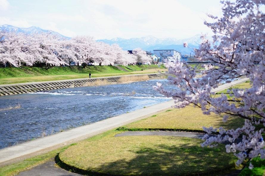 河川敷にはテニスコートやフラワーガーデンなどが整備され、市民の憩いの場となっている。