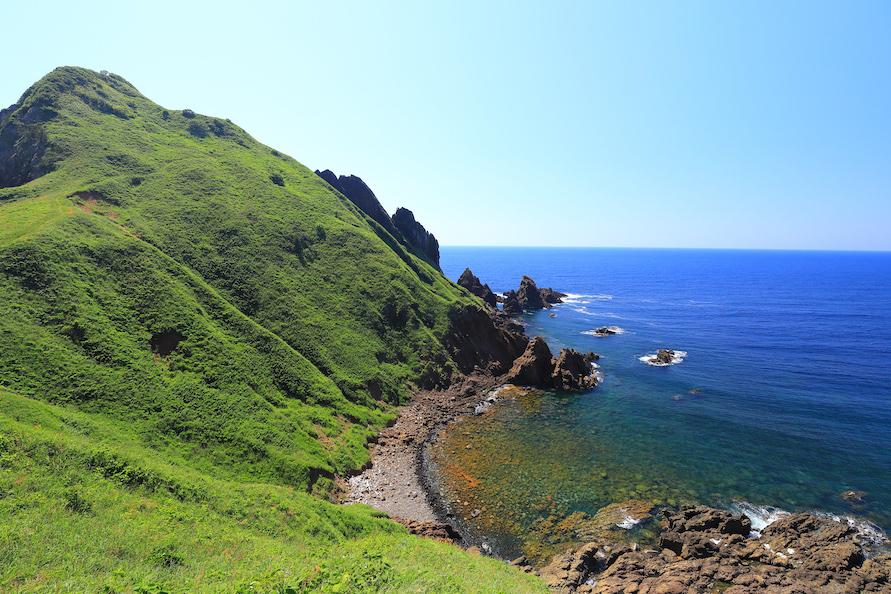遊歩道が設けられ、青い海とトビシマカンゾウのコントラストを楽しみながら散策できる。