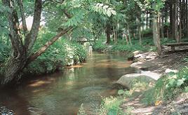 今にも川の中から現れそう!? カッパ伝説が息づく民話の里へドライブ 岩手県遠野市