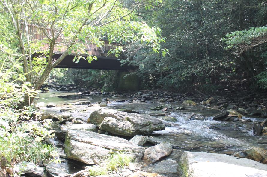 「ながさき県民の森」の北西部にある岩背戸渓谷は、下流のつがね落としの滝とともに多くの人が訪れるウォーキングスポット。
