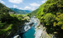 コバルトブルーの清流が輝く!アマゴ釣りやアユ料理が楽しめる宮川上流へドライブ 三重県大台町