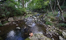 川遊びや巨大迷路でアウトドアを満喫!「グリーンステージ花の木」へドライブ 愛知県豊根村