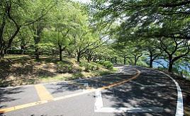 湖北岸の奥琵琶湖パークウェイを快適ドライブ!黒壁スクエアでショッピングやグルメも楽しもう 滋賀県長浜市