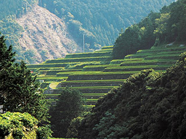 四国の海沿いを走る、観光におすすめのドライブルート