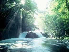 菊池阿蘇スカイラインを通る爽快ドライブ!熊本のおすすめドライブルート