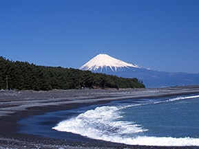 静岡のマチュピチュや梅ヶ島のわさび体験を巡るコース!静岡県おすすめのドライブルート