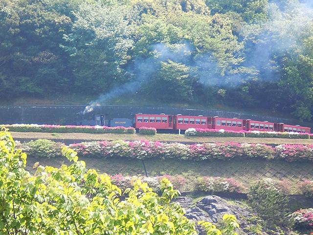 三河のオレンジロードを走る 愛知県おすすめドライブルート