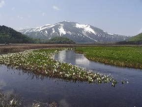 日本ロマンチック街道を走り、尾瀬国立公園を巡る 群馬おすすめのドライブルート