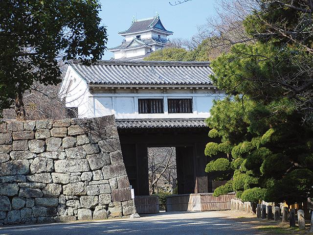 和歌山城から徳川家ゆかりの養翠園を巡る おすすめのドライブルート
