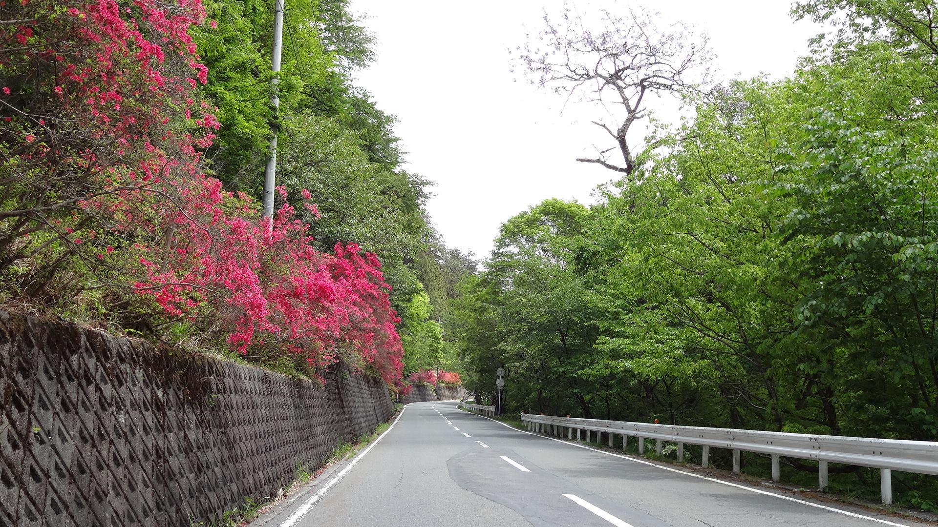 三峰ツツジ街道と歴史文化の街、「秩父」のおすすめドライブルート