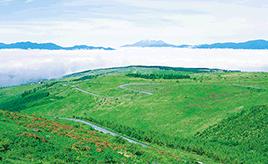 蓼科から美ヶ原高原を走る 絶景!ビーナスライン ドライブルート