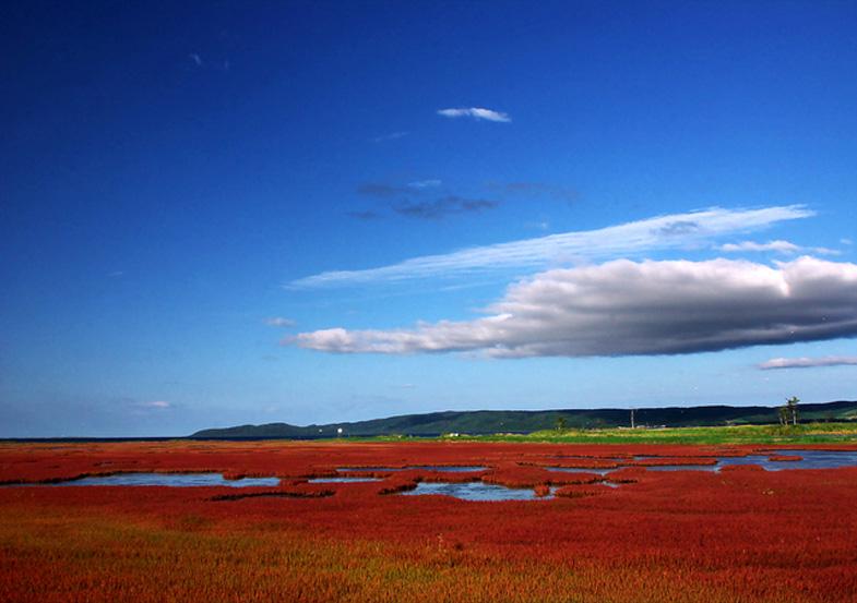 広大な風景を眺めながらオホーツク海近くの湖畔を走る絶景ドライブルート