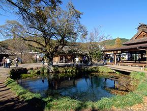 絶景ドライブルート 富士山の眺めと名水の里を楽しむ 山梨県忍野村