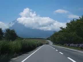 絶景ドライブルート 富士山に向かって走る絶景の花ロード 静岡県裾野市