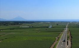 絶景ドライブルート 茶畑の中を海に向かってのびる直線道路 鹿児島県枕崎市