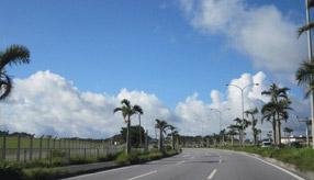 絶景ドライブルート 米軍基地に囲まれたヤシの並木道 沖縄県北谷町