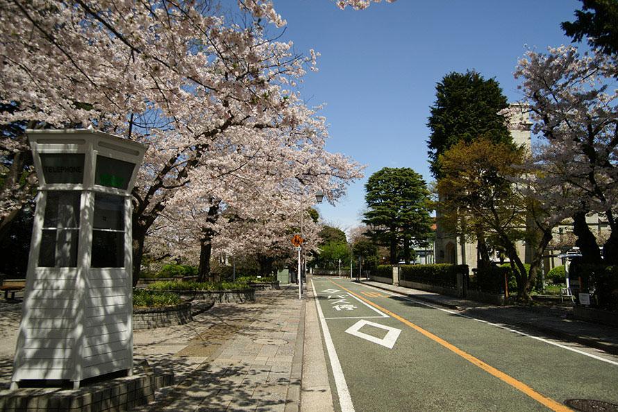 【絶景ビュースポット】街並みによく似合う、六角形の白い公衆電話も。