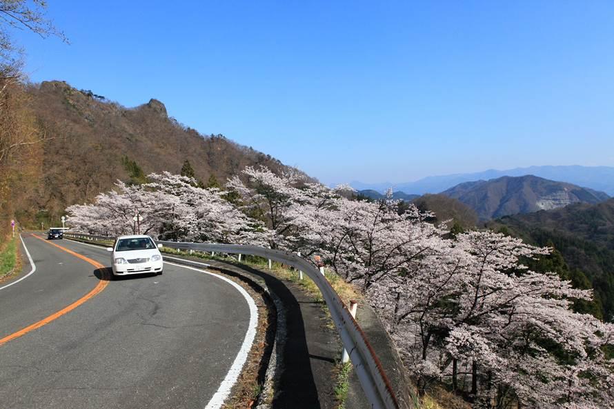 絶景ドライブルート 日本三大奇...