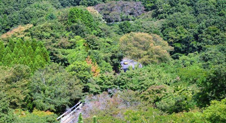 奈良県/信貴生駒スカイライン スカイライン特集