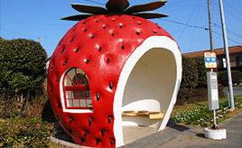 まるでおとぎの国!キュートなフルーツたちがバス停に変身 長崎県諫早市