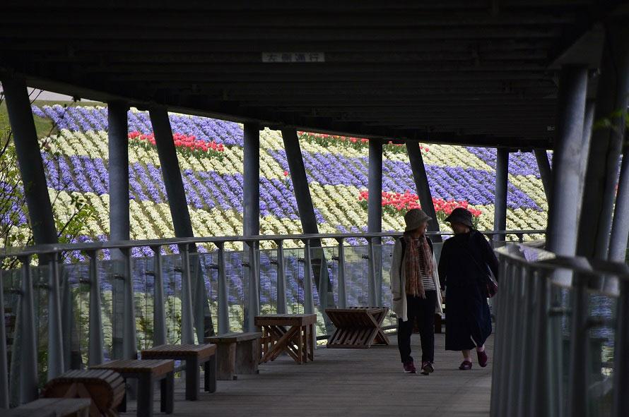 水平に設計された屋根付きの展望回廊。ベビーカーや車いすでの移動もスムーズ。