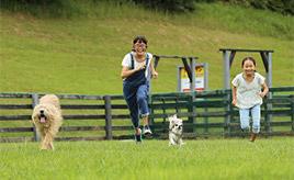 ペットとお出かけ♪ドッグランもある広~い観光牧場でたっぷり遊ぼう 千葉県富津市