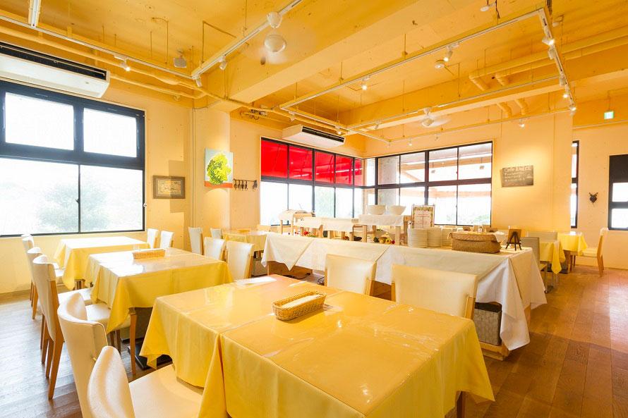 生パスタやカレーが人気の「カフェ・スコーラ」。ランチタイムには淡路島野菜のサラダバーが楽しめる。ランチは1350円から。カフェタイムのドルチェもおすすめ。