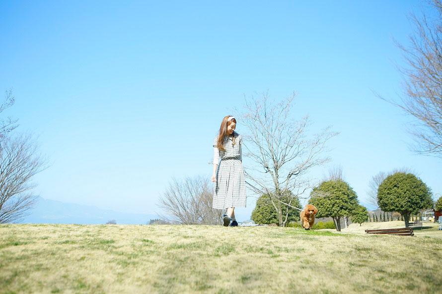 ふれあいコーナーでは、名犬牧場にいるわんちゃんたちと触れあったり、お散歩を体験したりできる。