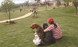愛犬とお出かけ♪日本最大級のドッグランで遊び、世界各国のわんちゃんと触れあおう 群馬県前橋市