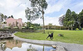 愛犬とお出かけ!愛犬と家族がくつろぎ、楽しめる極上のリゾート施設 千葉県八街市