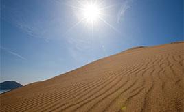 絶景に出会う!風と砂が織りなす風紋が見事な鳥取砂丘へ 鳥取県鳥取市