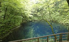 なんともきれいな湖にため息!日本が誇る白神山地の青池へドライブ 青森県深浦町