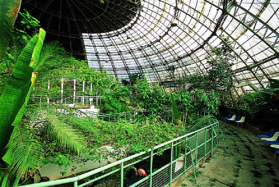 高さ15mのドームは変則的な階層構造になっており、多種多様な植物と動物を観察しながら歩くことができる。