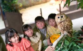 非日常のネイチャー体験!動物とふれあえるパーク「オービィ横浜」 神奈川県横浜市